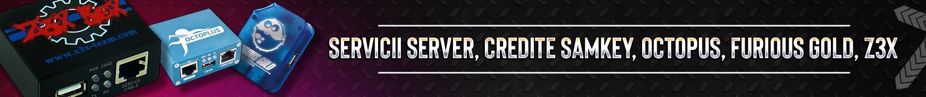 Servicii Server